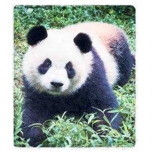 4living Panda Metsässä Torkkupeitto