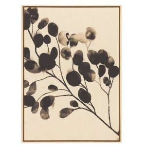 4living Taulu Eukalyptus 69x96 Cm