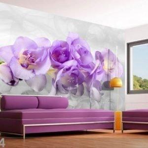 Ag Design Fleece-Kuvatapetti 3d Orchid 360x270 Cm