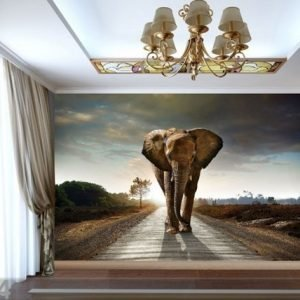 Ag Design Fleece-Kuvatapetti Big Elephant 360x270 Cm