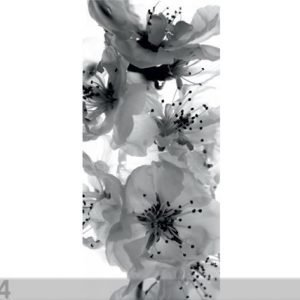 Ag Design Fleece Kuvatapetti Black And White Flower 90x202 Cm