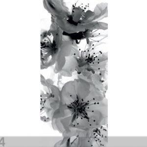 Ag Design Fleece Kuvatapetti Black And White Flower 90x202 Cm