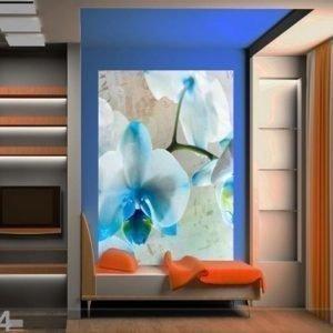 Ag Design Fleece Kuvatapetti Blue Flowers 180x202 Cm