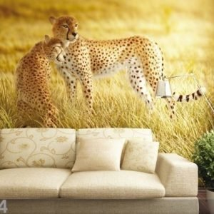 Ag Design Fleece-Kuvatapetti Cheetahs 330x255 Cm