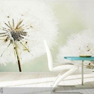 Ag Design Fleece-Kuvatapetti Dandelion 360x270 Cm