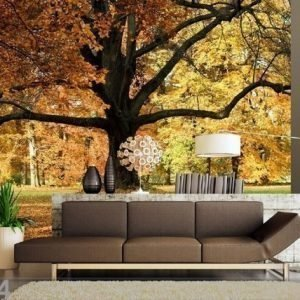 Ag Design Fleece Kuvatapetti Oak Tree 360x170 Cm