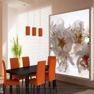Ag Design Fleece Kuvatapetti Pink Flowers 180x202 Cm