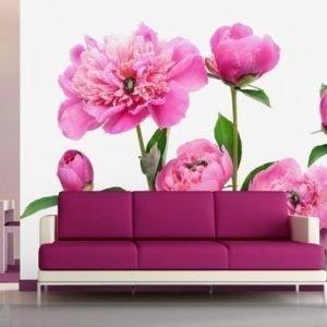 Ag Design Fleece-Kuvatapetti Pink Peony 360x270 Cm