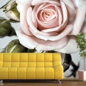 Ag Design Fleece-Kuvatapetti Roses 360x270 Cm