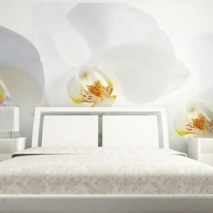 Ag Design Fleece-Kuvatapetti White Orchid 360x270 Cm