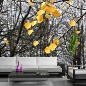 Ag Design Fleece Kuvatapetti Yellow Leaves 360x270 Cm