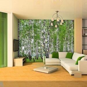 Ag Design Kuvatapetti Birch 360x254 Cm