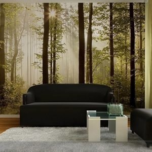 Ag Design Kuvatapetti Early Wood 360x254 Cm