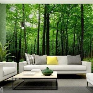 Ag Design Kuvatapetti Forest 360x254 Cm