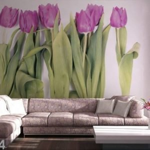 Ag Design Kuvatapetti Purple Tulips 360x254 Cm