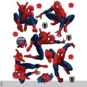 Ag Design Seinätarra Spider 42