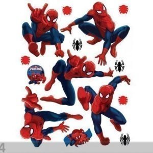 Ag Design Seinätarra Spider 65x85 Cm