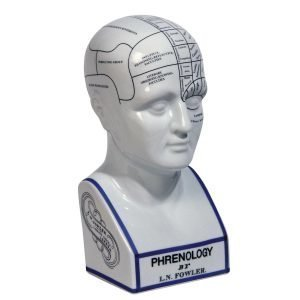 Authentic Models Phrenology Head Pysti