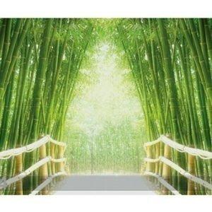 Bilder-Welten Kuvatapetti Bamboo Walk 400x280cm