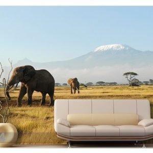 Bilder-Welten Kuvatapetti Kilimanjaro Elephants 400x280 Cm