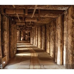 Bilder-Welten Kuvatapetti Salt Mine 400x280cm