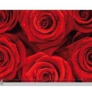 Bilder-Welten Kuvatapetti Sea Of Roses 400x280 Cm