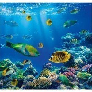 Bilder-Welten Kuvatapetti Underwater World 300x280 Cm