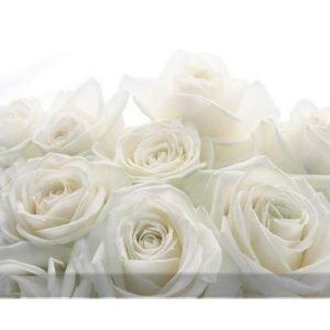 Bilder-Welten Kuvatapetti Wedding Roses 400x280cm
