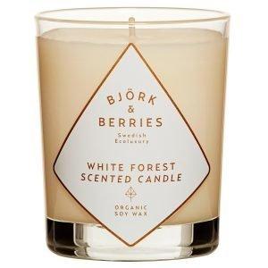 Björk & Berries White Forest Tuoksukynttilä