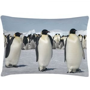 Bloomingville Penguins Tyyny 70x35 Cm