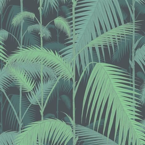 Cole & Son Palm Jungle Tapetti Musta
