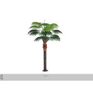 Da Palmu 210 Cm