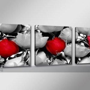 Ed Kolmeosainen Seinätaulu Ruusu