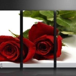 Ed Kolmeosainen Seinätaulu Ruusut