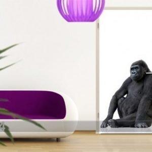 Ed Kuvatapetti Gorilla Thought 100x210 Cm