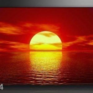 Ed Seinätaulu Auringonlasku 120x80 Cm