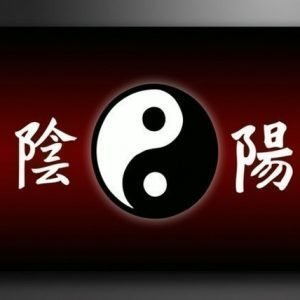 Ed Seinätaulu China 120x80 Cm