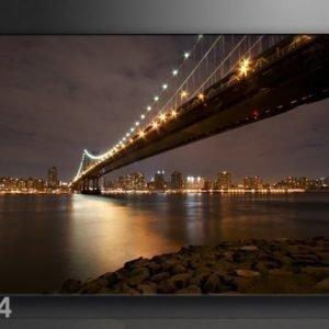 Ed Seinätaulu New York 120x80 Cm