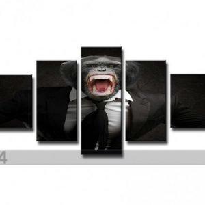 Ed Viisiosainen Seinätaulu Apina
