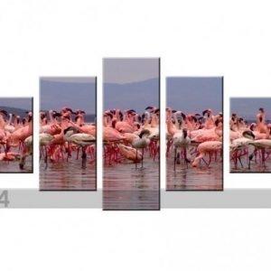 Ed Viisiosainen Seinätaulu Flamingot