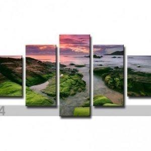 Ed Viisiosainen Seinätaulu Luonto 160x80 Cm