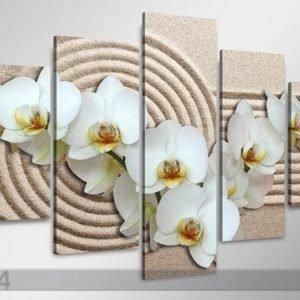 Ed Viisiosainen Seinätaulu Valkoinen Orkidea Hiekalla