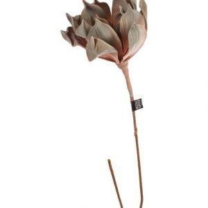 Eightmood Enea Koristekasvi 65 cm