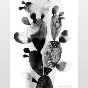 Ellos Kaktus Juliste Musta 50x70 Cm