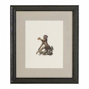 Ellos Monkey 2 Taulu Monivärinen 35x40 Cm