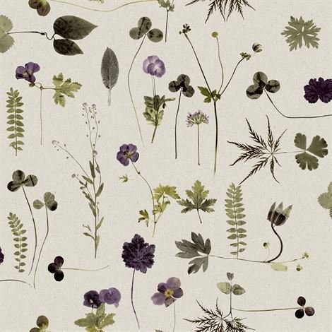 Engblad & Co Botanica Tapetti Beige
