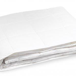 Familon Silver Kevytuntuvapeite 350 G