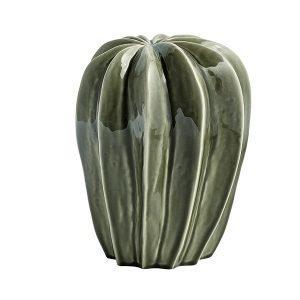 Hay Cacti Uno Koriste-Esine