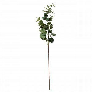 Hemtex Eucalyptus Twig Tekokukka Vihreä 20x85 Cm