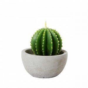 Hemtex Kaktus Koristekynttilä Vihreä 7x7 Cm